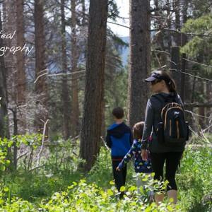 Family Hiking in Colorado   Colorado and Texas Family Photographer